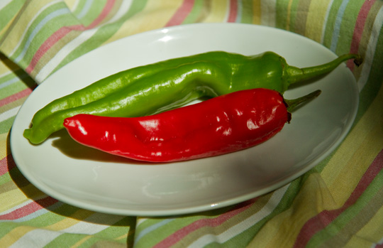 New Mexico chile - red or green?