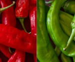 New Mexico Red and Green Chiles