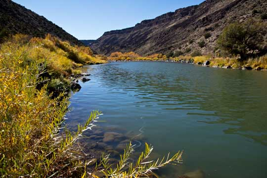 Fall colors on the Rio Grande, New Mexico