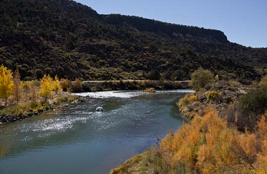 Fall colors of the Rio Grande, New Mexico