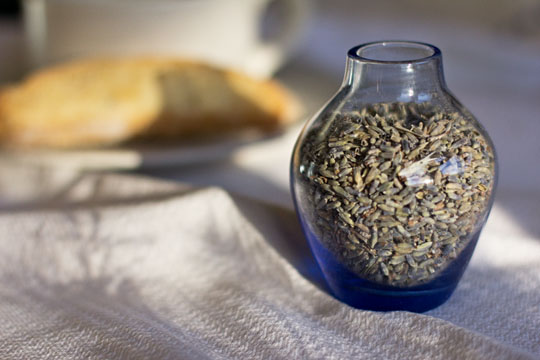 Bottle of dried lavender