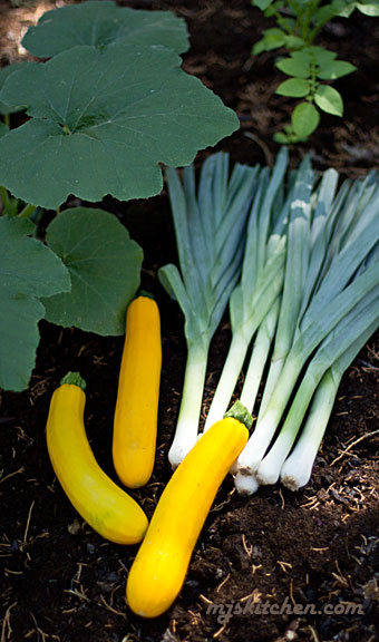 Young leeks with Yellow squash