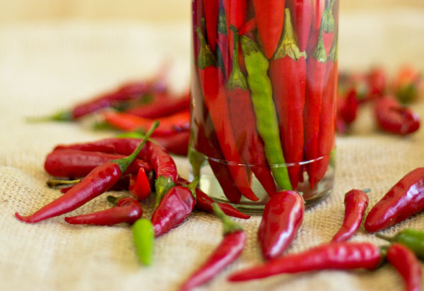 A quick and easy pepper sauce made with chile pequin