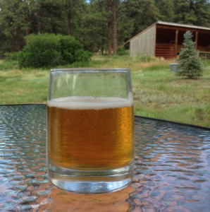 A green chile brew from Rift Raft in Pagosa Springs, CO mjskitchen