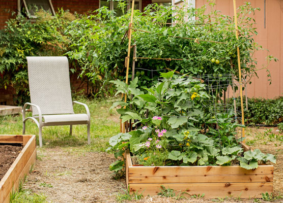 Small raised bed garden | mjskitchen.com