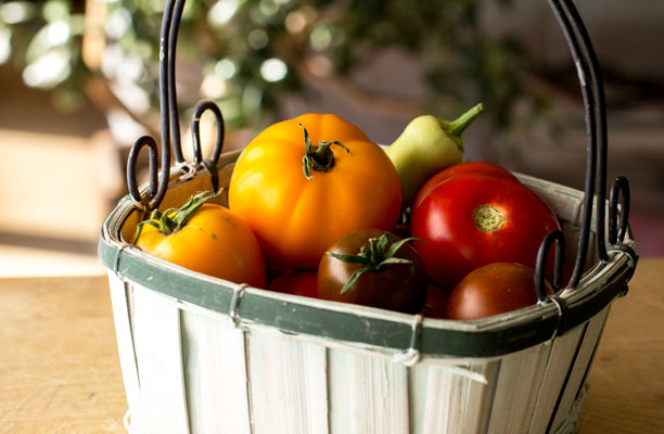 Basket of heirloom tomatoes. mjskitchen.com