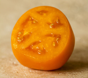 Golden Jubilee Heirloom Tomato | mjskitchen.com