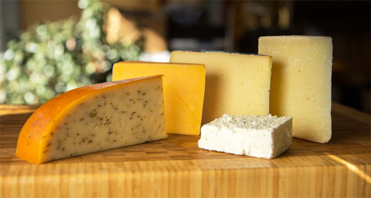 Cheese and cheese pairings | mjskitchen.com