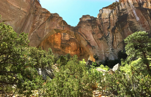 The largest natural arch in New Mexico - the La Ventana Arch in the El Malpais National Monument | mjskitchen.com
