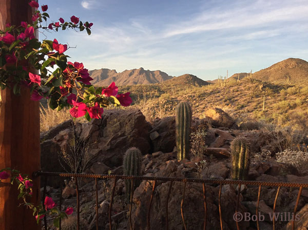 A view west of Tucson, Arizona | mjskitchen.com